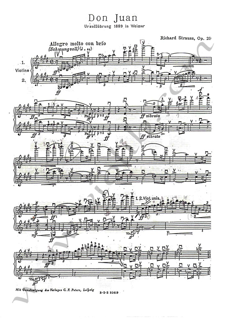 """Р. Штраус """"Дон Жуан"""" оркестровые трудности для скрипки"""