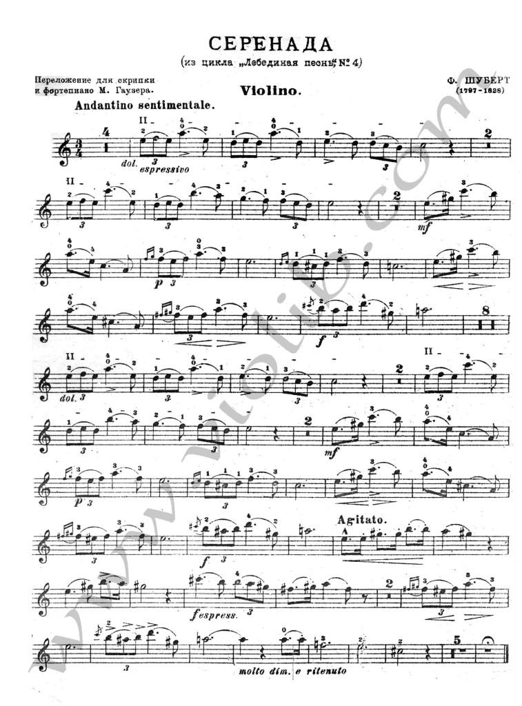 "Ф. Шуберт ""Серенада"" минусовка для скрипки (флейты)."